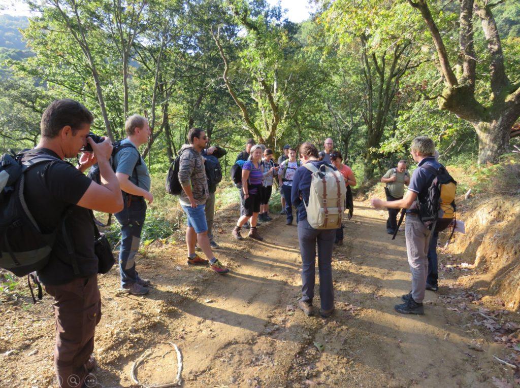 Exkurze do Francie při návštěve lesů obce Sare, nejrozsáhlejších porostů hlavatých dubů v Evropě.
